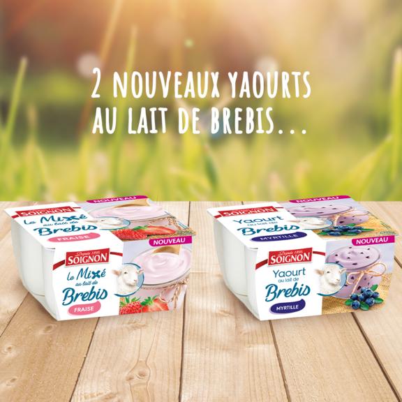 Pssst, deux nouveaux yaourts au lait de brebis sont en magasin !